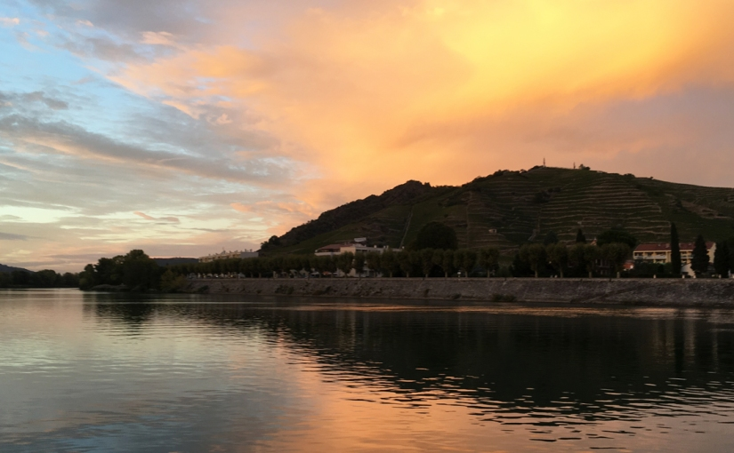 Travel vicariously with Will Lyons as he recalls a memorable trip with club members and readers of The Sunday Times along the RhôneRiver